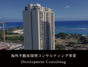 Development Consulting